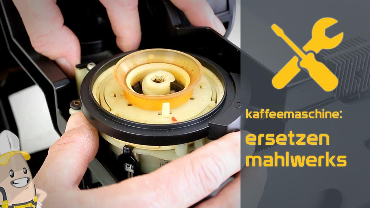 Delonghi Kaffeemaschine Mahlwerk Einstellen : Ersetzen des mahlwerks ihrer kaffeemaschine das ersatzteilercenter