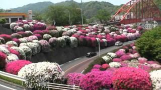 平清盛が切り開いたと伝えられる音戸の瀬戸に1961年呉市と倉橋島に...