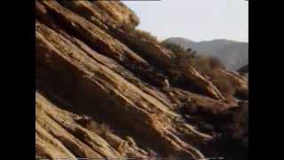 Repeat youtube video Pustynny jastrząb - [Lektor PL] CAŁY FILM