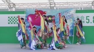 2016/5/8 Sun 『仙台国際ハーフマラソン応援』ステージ やって来ました...
