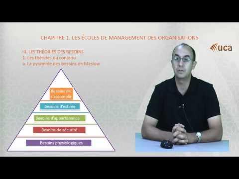 Chapitre CHAPITRE 1. LES ÉCOLES DE MANAGEMENT DES ORGANISATIONS