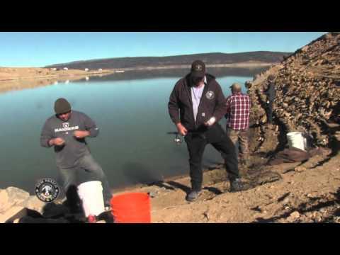 Salmon Snagging At Heron Lake, New Mexico