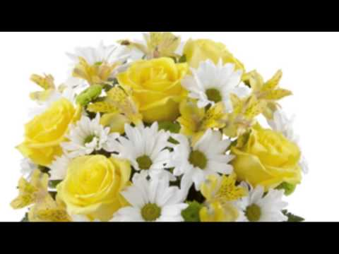 flowers and florists Lockport Larchmont NEW YORK