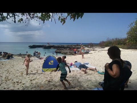Snorkeling Smith Cove Beach Smith Barcadere Grand Cayman