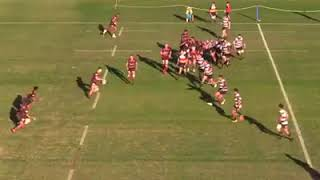 Intrust Super Shute Shield Highlights 2018 | Norths Rugby vs West Harbour | Round 5