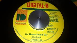 Cocoa Tea - Go Home Soundboy