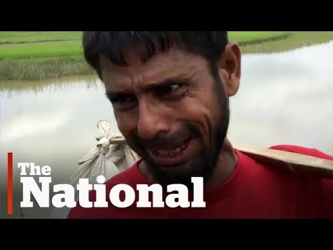 Rohingya Muslims fleeing Myanmar describe military's violence and killings