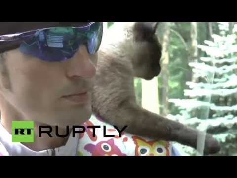 Cat Rides on Shoulders of Pro Cyclist Every Day