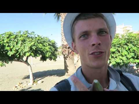 Eating ripe figs on the beach - Fig trees Spain