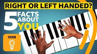 Right or left-handed? 5 facts about you | BBC Ideas