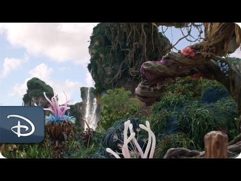 Pandora - The World of Avatar Meet-Up | Disney's Animal Kingdom