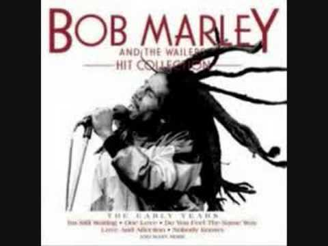 bob marley mega dog