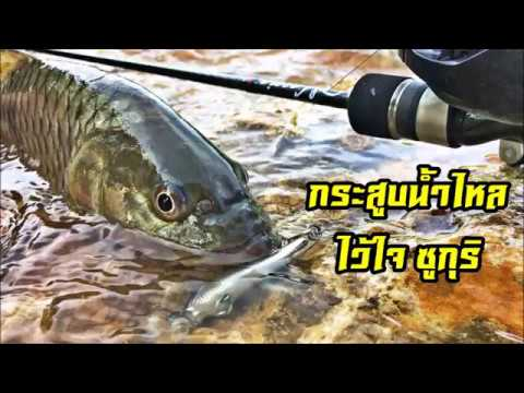 7b4bc8196218 Сумка Funky Fish в Краснодаре - 1495 товаров: Выгодные цены.