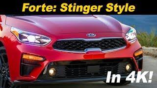 2019 Kia Forte - Is it the Stinger