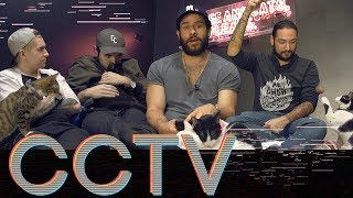 CRUMBS & WHISKERS CAT CAFE • CCTV #20