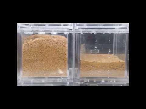 super absorbent polymer for plants