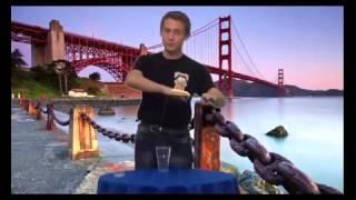 Пушистик Байла Урок 2   Ползание Байлы по рукам