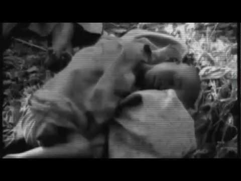 """210 ALL STYLES ( KHOZA )  -  """" DANS MA CAGE """"   ( Nouvelle Version du clip !!! )"""