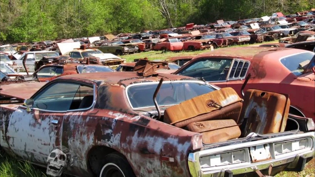Old abandoned drag and rare cars in junkyard. Abandoned Muscle ...