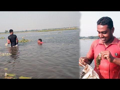 Village Friend Fishing in Cholon Bill । Catching Fish By Hand। Huge Fish & Fun