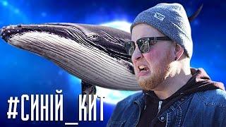 СИНИЙ КИТ - ПУКАН ГОРИТ!