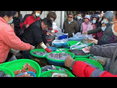 Taiwan Seafood Auction - Amazing Fish, Salmon Cutting !