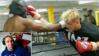 Reacting To Jake Paul's NEW Sparring Footage..