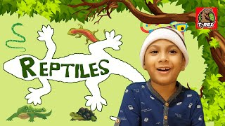 Reptiles for Kids | Educationa…