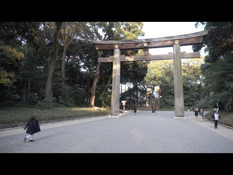 Japan, Day 3.1, Tokyo - Walking around Meiji Shrine 明治神宮 in Shibuya [4K, Zhiyun]