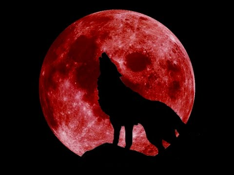 The Game - YEAR OF THE WOLF (Blood Moon Snippet / Album Preview)