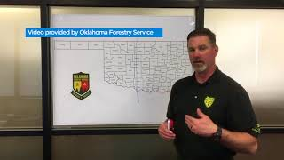 Oklahoma Forestry Service warns for extreme fire danger