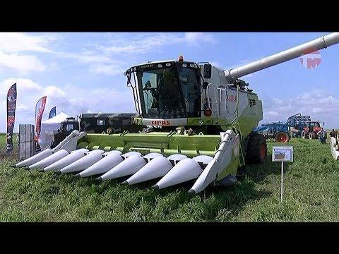 День поля отпраздновали аграрии в селе Первомайском