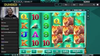 Mr.Casino - BIG WIN on Raging Rhino BONUS €4x340!!!
