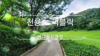 천룡cc & 천룡퍼블릭 골프장
