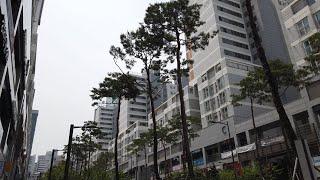 [4K60] Walking Seoul Korea. 황학…