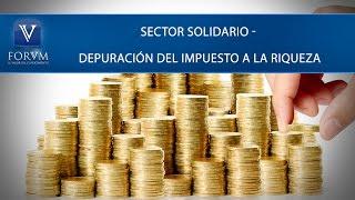 Sector solidario - depuración del impuesto a la riqueza. DIAN. [Derecho tributario]