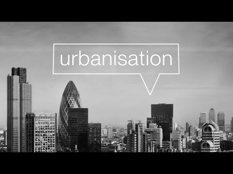 Urbanisation and the growth of global cities