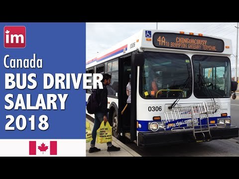 Bus Driver Salary In Canada (2018) - Wages In Canada