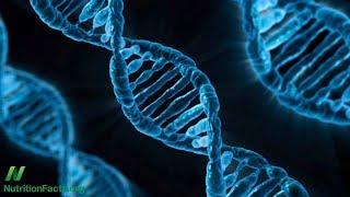 Gen Alzheimerovy choroby: ApoE pod kontrolou