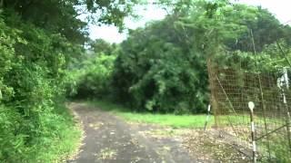普通車で行く険道 - 滋賀県道525号西明寺安部居線 核心部