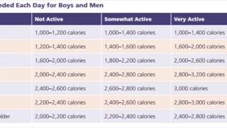 Daily Calorie Intake For Boys & Men 14-50