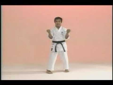 Goju-kai kata Sanchin