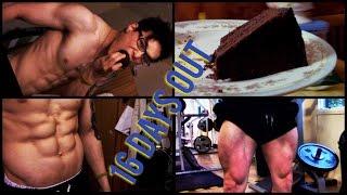 | eat CAKE get SHREDDED | IIFYM Full day eating | Happy LEG day |