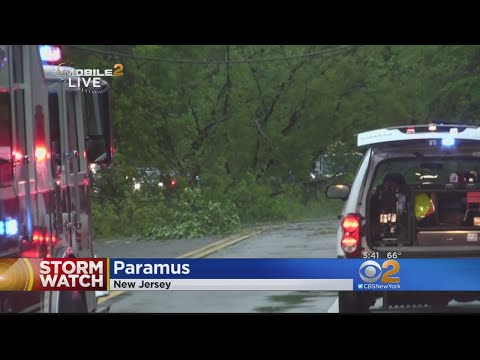 Severe Weather Downs Trees In Paramus, New Jersey