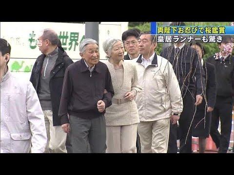 両陛下お忍びで桜鑑賞 皇居ランナーもびっくり(19/04/07) (Việt Sub)