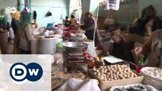 Kirgistan: Rettet den Walnuss-Dschungel! | Global 3000