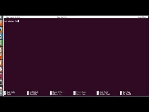 tutorial basic commentihsan ismail