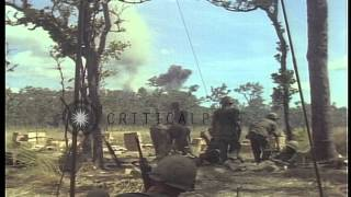 Dead soldiers of US 1st Air Cavalry Division are piled into UH-1D helicopters in ...HD Stock Footage