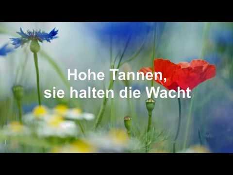 Hohe Tannen. Ronny. Mit Text/Lyrics (HD 1080p)