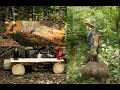 Log Cabin Update: Moving it to the Property, Making a Log Bench and Fireside Chat